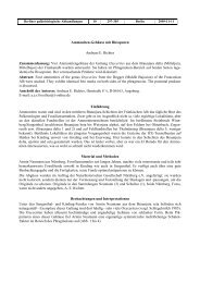Ammoniten-Gehäuse mit Bissspuren Andreas E. Richter ...