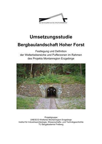 Bergbaulandschaft Hoher Forst - Wirtschaftsförderung Erzgebirge ...