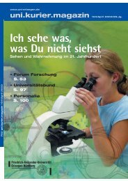 Ich sehe was, was Du nicht siehst - Friedrich-Alexander-Universität ...