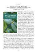 AGRION - Adolfo Cordero Rivera - Page 6