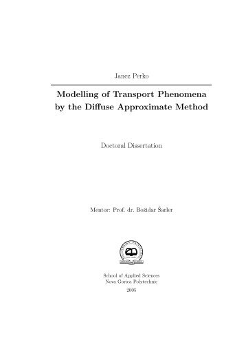 Modelling of Transport Phenomena by the Diffuse Approximate ...