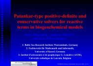 Patankar-type positive-definite and conservative solvers for reactive ...