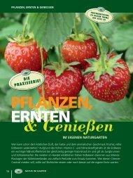 Erdbeerzeit - Natur im Garten