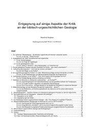 Entgegnung Heinzerling.rtf - Wort und Wissen