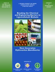 Breaking the Chemical and Engineering Barriers to Lignocellulosic ...