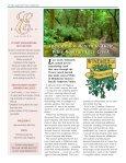2011 Grapevine Newsletter 11.pdf - Vinesse - Page 4