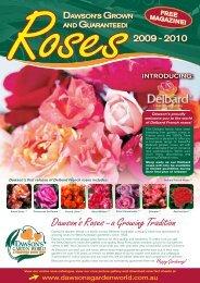 Roses Dawsons G - Dawson's Garden World
