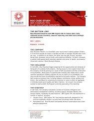 ROI CASE STUDY IBM COGNOS TM1 BLUE MOUNTAIN RESORTS