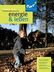 Ausgabe 3/2008 Privatkunden-Journal - EWR GmbH