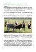 Das Infoheft der Noteselhilfe e.V. - Seite 6