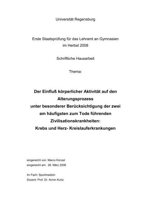 Ausschnitt Zulassungsarbeit Marco Kunzel Als Pdf