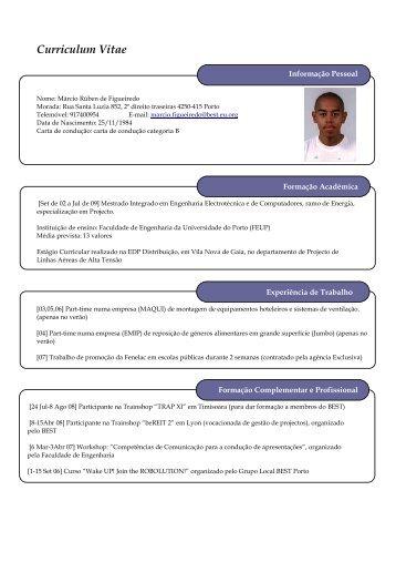 Curriculum Vitae - Faculdade de Engenharia da Universidade do ...