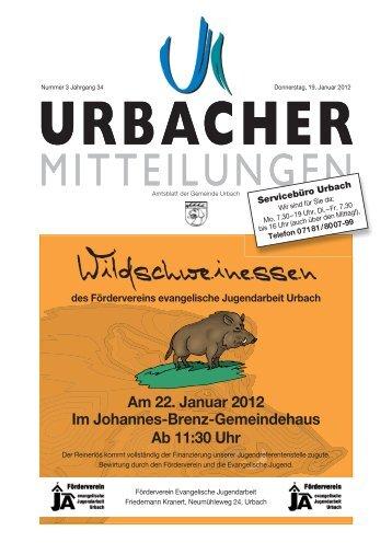 Am 22. Januar 2012 Im Johannes-Brenz-Gemeindehaus Ab 11:30 Uhr