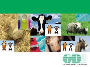 Maagdarmwormen bij schapen: andere aanpak - GCSIX.nl