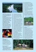 Programm Amazonas - Frankfurter Neue Presse - Seite 3