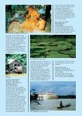 Programm Amazonas - Frankfurter Neue Presse - Seite 4