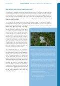Solar parks - Agentur für Erneuerbare Energien - Page 5