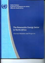 The Renewable Energy Sector in North Africa - Economic ...