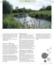 here - Ribe - Page 5