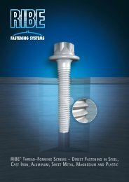 RIBE Fastening Systems - Thread-Forming Screws