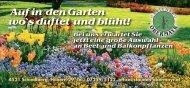 Bei uns erwartet Sie jetzt eine große Auswahl ... - Gartenbau Obermayr