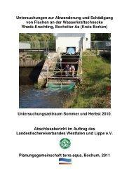 Wasserkraftschnecke Rhede-Krechting - Fischartenatlas von ...