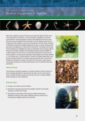 Ecosystems - GICON - Page 3