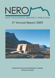 Report - Nuuk Basic