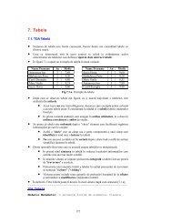 Capitolul 7