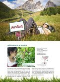 Immer dem Gaumen nach! - GRM GenussRegionen Marketing GmbH - Seite 7