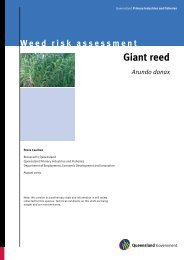 Giant reed (Arundo donax) - Department of Primary Industries
