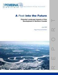 A Peak into the Future Potential Landscape Impacts