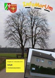Ausgabe 22 - Stand November 2012 - Gemeinde Merzenich