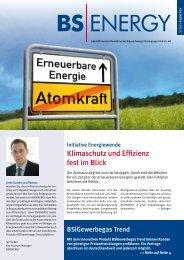 3/2011 - BS Energy