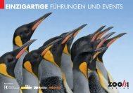 Eventbroschüre 2012 [PDF, 3.00 MB] - Zoo Zürich