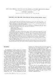 I percorsi del sogno  Michel de Montaigne e Pierre de Lancre