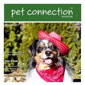 Paws to Read - Pet Connection Magazine
