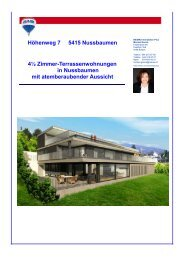 Doku Nussbaumen 2 - Marisol Garcia Borkheim Immobilien