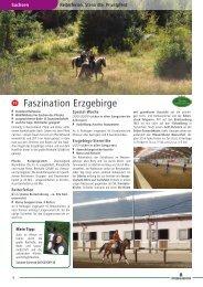 Drucken Sie die pdf-Katalogseiten aus - Pferd & Reiter
