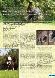 Ausbilder Knut Danzberg: Talentförderung bei Reiter und Pferd als ...
