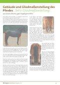 Tschüss Sommer Hallo Herbst - MPH - Mensch Pferd Hund - Page 5