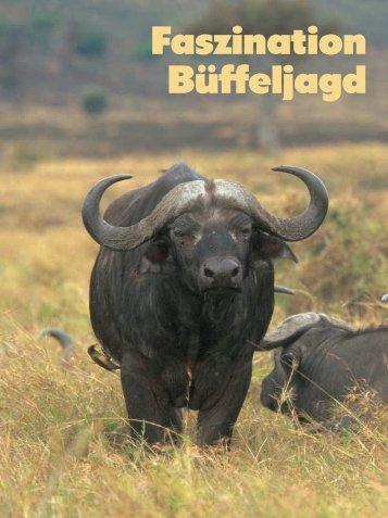 Faszination Büffeljagd - Jagen Weltweit