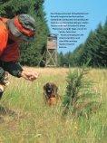 060 065 Nachsuche Rehwild - Wild und Hund - Seite 2