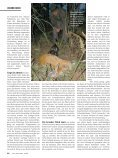 060 065 Nachsuche Rehwild - Wild und Hund - Seite 5