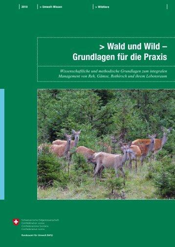 Wald und Wild – Grundlagen für die Praxis - BAFU