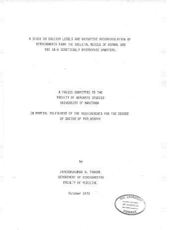 Art phd thesis Yumpu