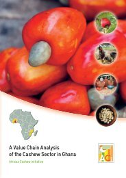 A Value Chain Analysis of the Cashew Sector - AGOA Export Toolkit