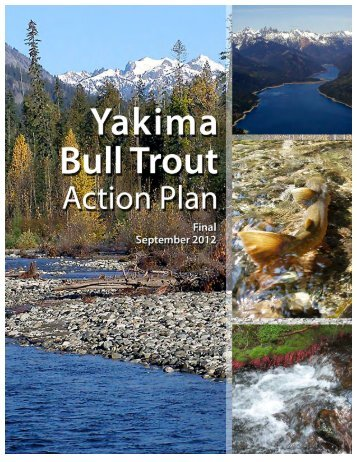 Bull Trout Action Plan - Yakima Basin Fish & Wildlife Recovery Board