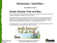 Bauanleitung Nistkasten, Nisthilfen als PDF - BUND Waldeck ...