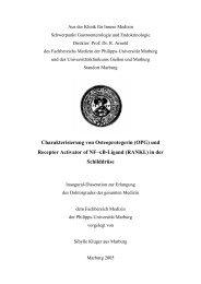 Charakterisierung von Osteoprotegerin (OPG) - Philipps-Universität ...